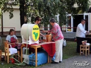 Slavnosti burčáku, Kralupy nad Vltavou, 12.9.2015