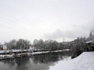 Téměř monochromatická zimní krása