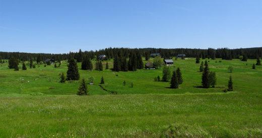 Šumava pěšky: okruh Horská Kvilda - Kvilda - Modrava - Horská Kvilda